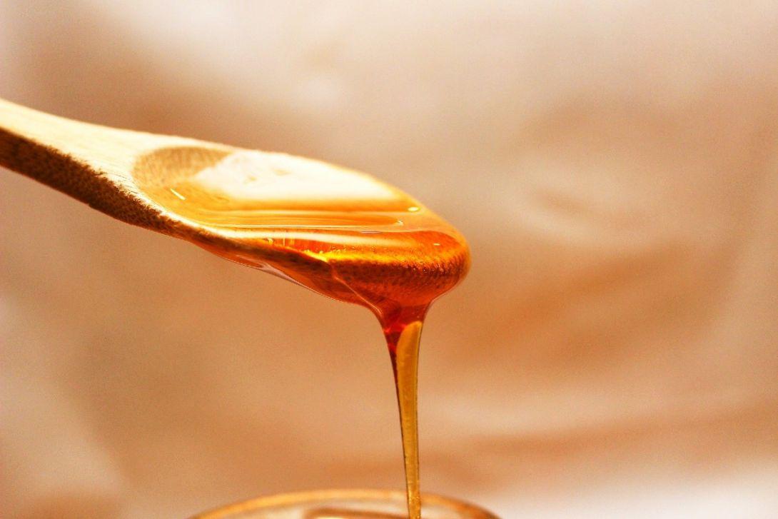 Miód pszczeli. Czym jest? Skąd się bierze? Historia i początki pszczelarstwa.
